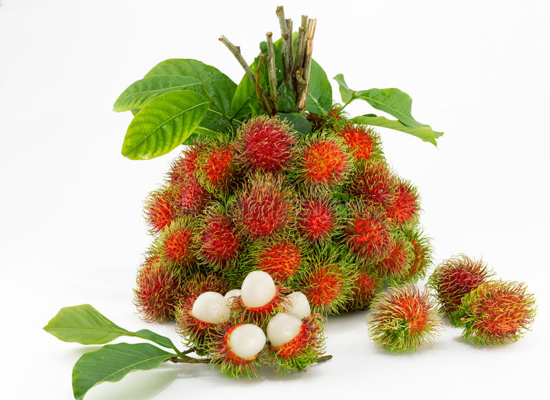 Rambutan. Tropical fruits royalty free stock photography