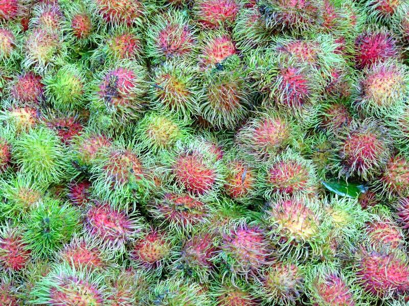 rambutans стоковое изображение