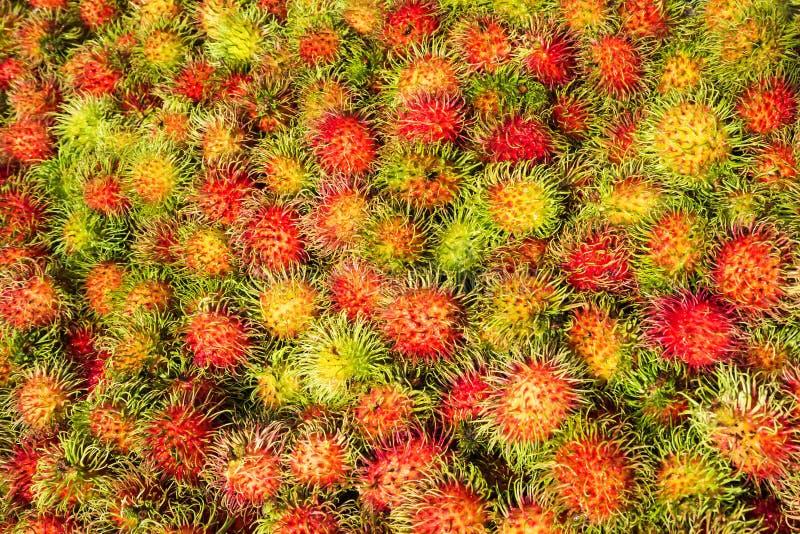 Rambutans orgânicos frescos na loja da prateleira Fruta tropical Ta doce imagens de stock royalty free