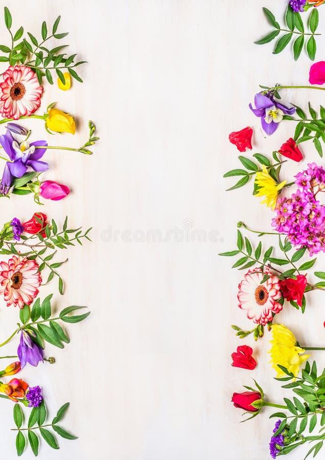 Ramen av våren blommar, färger för en variation, utrymme för text, kortet för ferien arkivfoto