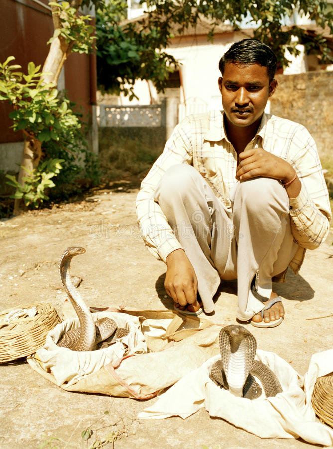 Ramesh The Snake charmer Goa India. This is a rear sight these days in india as snake charming has been band because of cruelty to animals laws because Goa is stock photography