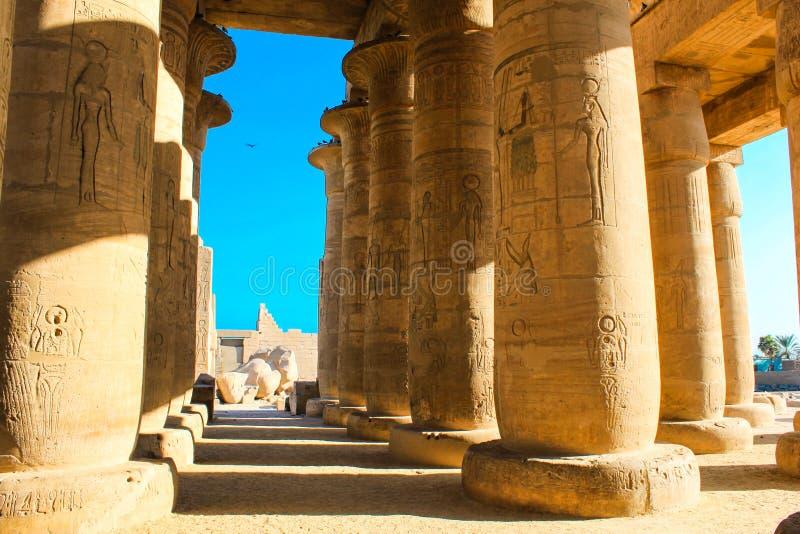 Ramesseum temple, Egypt royalty free stock photo