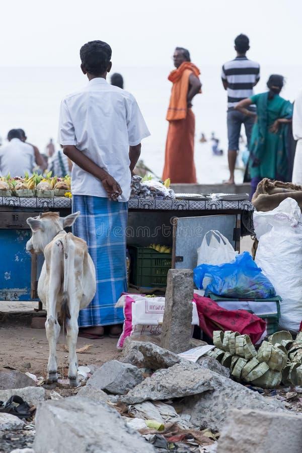 Rameswaram, India - May 25, 2014. Rameswaram, Tamil Nadu, India - May 25, 2014. Full report about Rameswaram pilgrimage, religion. Religious city rituals. Life stock images