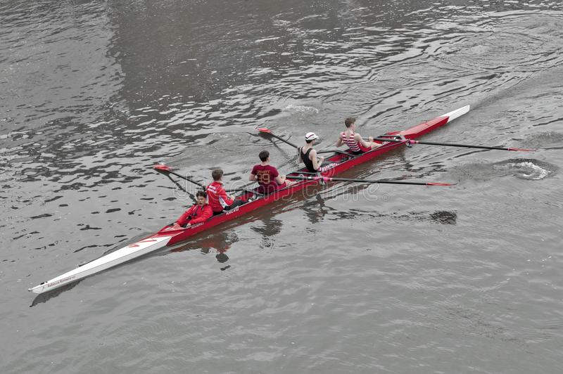 Rameurs de la formation de Kingston Rowing Club pour la régate de canoë en Tamise, Kingston, Angleterre images stock