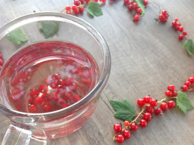 Ramfrоmklungor och sidor av den röda vinbäret med tekoppen på en träyttersida royaltyfria bilder