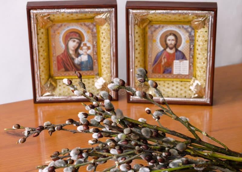 Rami con i fiori lanuginosi del salice sui precedenti delle icone cristiane immagine stock