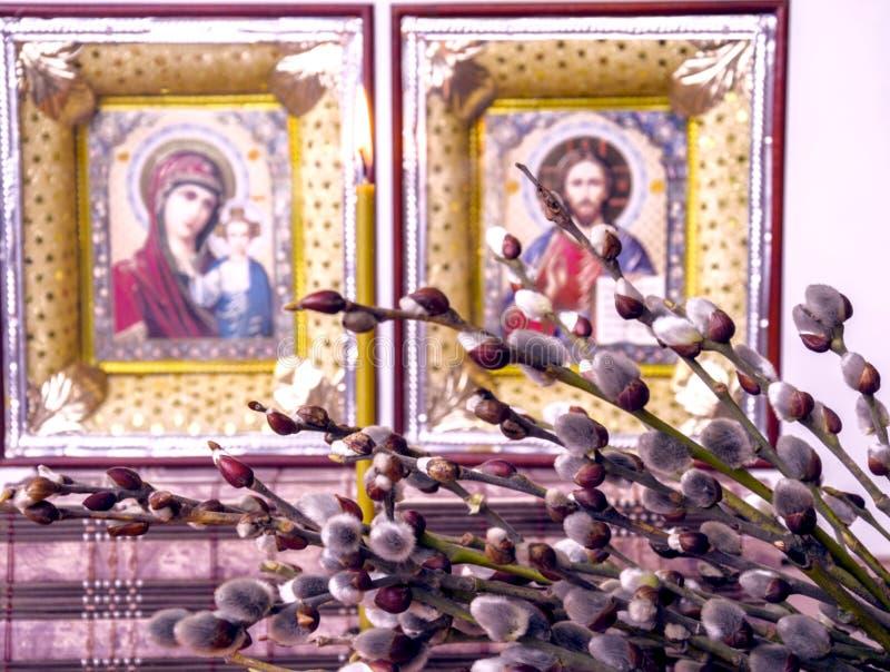 Rami con i fiori lanuginosi del salice sui precedenti delle icone cristiane fotografia stock