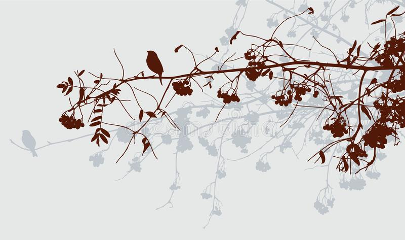 Rami degli alberi di sorba nella foresta di autunno illustrazione di stock