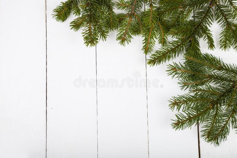 Rami dell'abete su un fondo di legno bianco fotografia stock