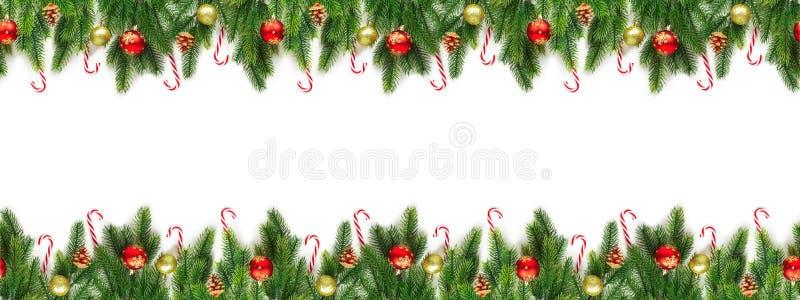 Rami dell'albero di Natale su fondo bianco come confine fotografie stock