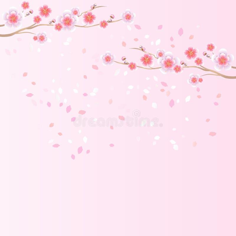Rami di volata dei petali e di Sakura isolata su fondo rosa-chiaro fiori dell'Apple-albero Cherry Blossom Vettore ENV 10, cmyk illustrazione vettoriale
