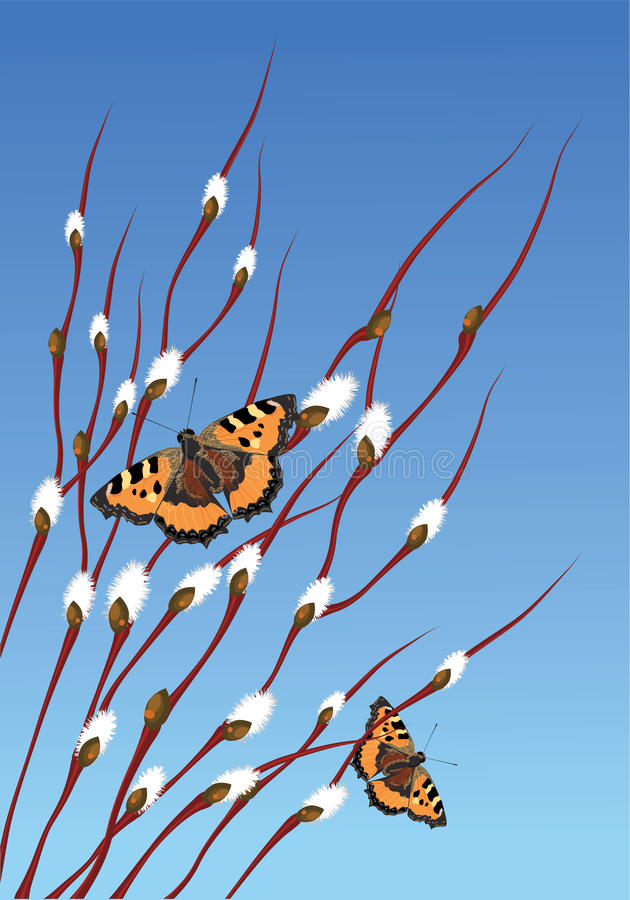 Rami e farfalle del salice illustrazione vettoriale for Rami di salice