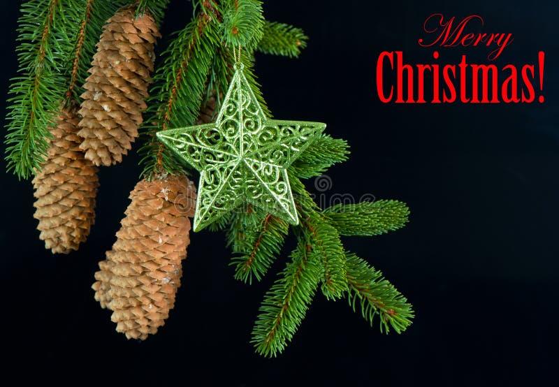 Ramificación de árbol de abeto con la decoración brillante de la estrella foto de archivo libre de regalías
