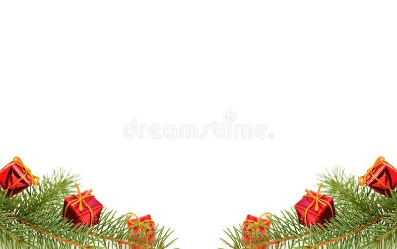 Ramificación de la Navidad foto de archivo