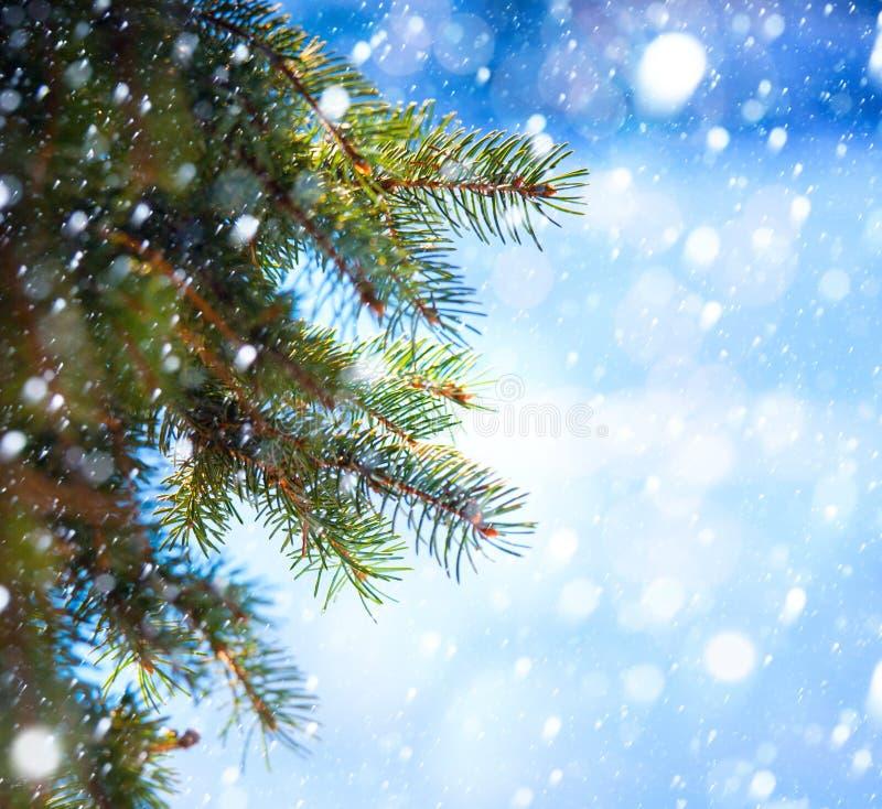 Ramificación del árbol de navidad del arte y caída de la nieve imagen de archivo libre de regalías