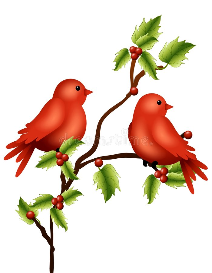 Ramificación del acebo de los pájaros del invierno ilustración del vector