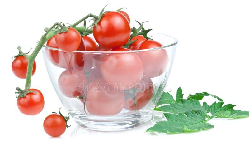 Ramificación del tazón de fuente de ensalada del tomate de cereza imágenes de archivo libres de regalías