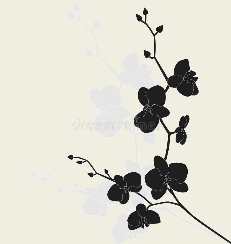 Ramificación estilizada de la orquídea ilustración del vector
