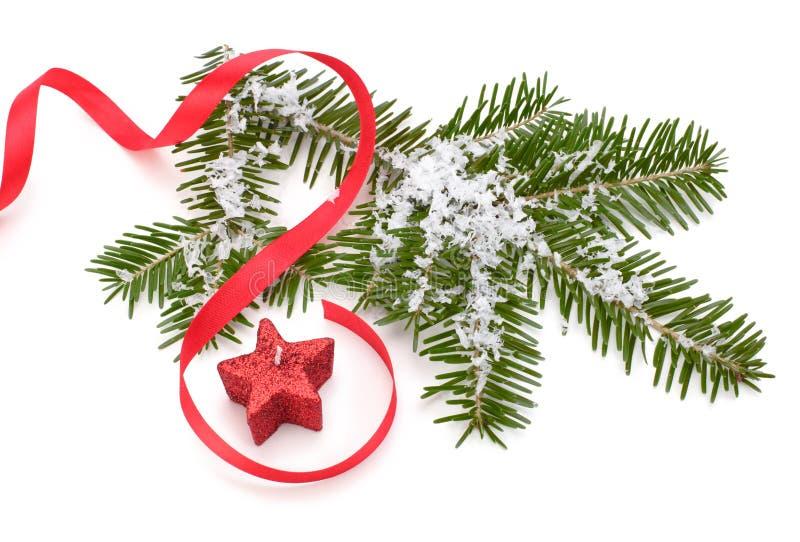 Ramificación Spruce en nieve imágenes de archivo libres de regalías