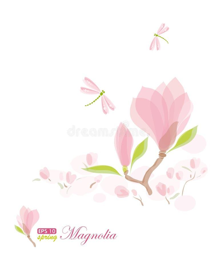 Ramificación y libélula de la magnolia stock de ilustración