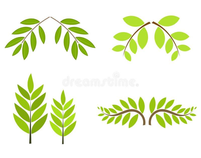 Ramificaciones de árbol stock de ilustración