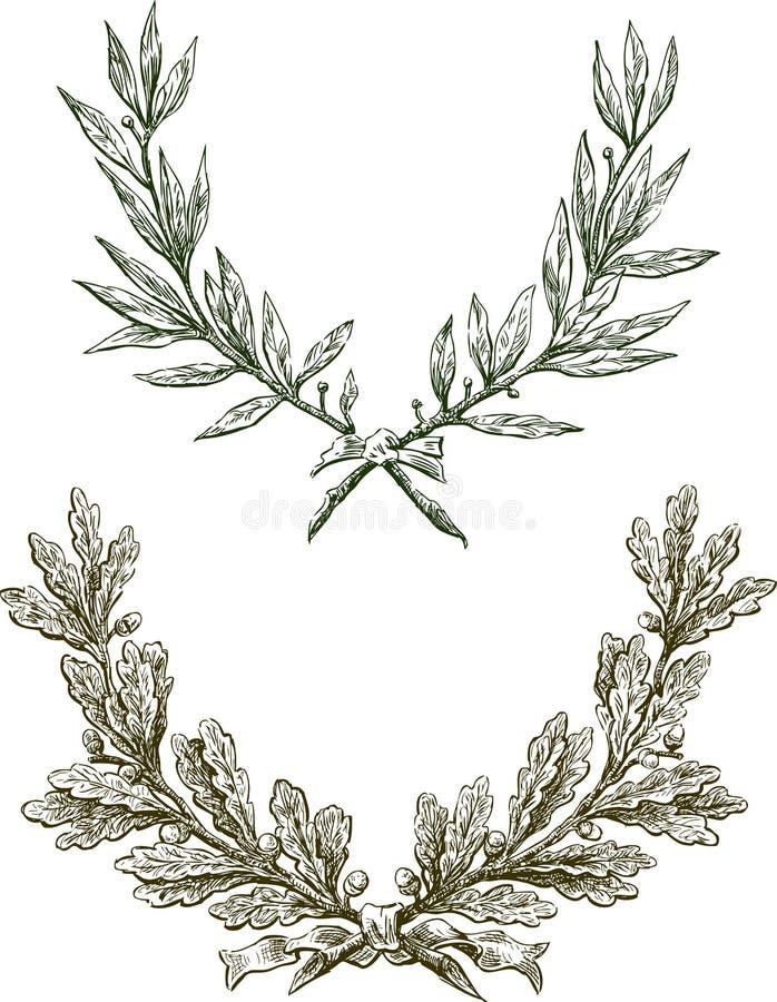 Ramificaciones del laurel y del roble stock de ilustración