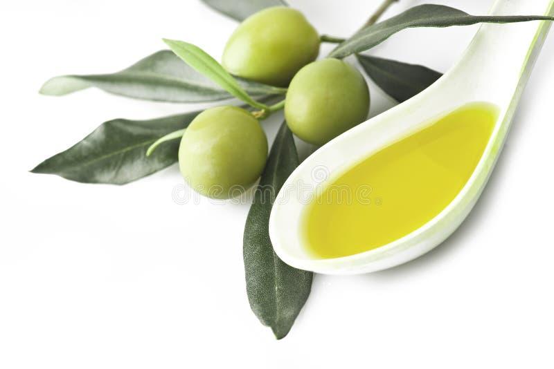 Ramifichi con oliva fotografia stock