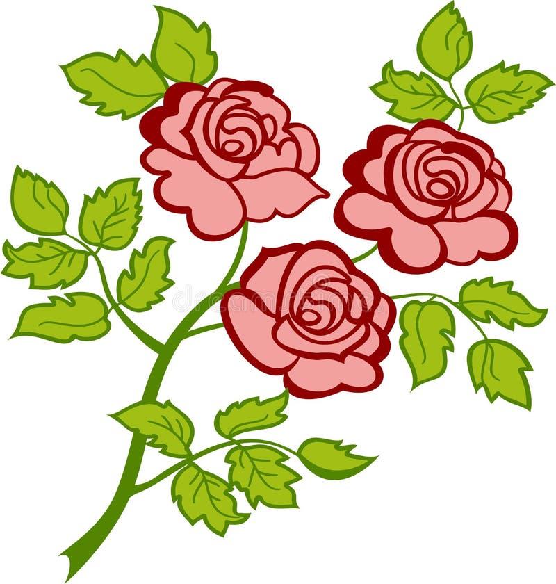 Ramifichi con tre rose dentellare. royalty illustrazione gratis