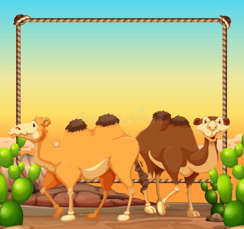 Rammall med två kamel i öken royaltyfri illustrationer