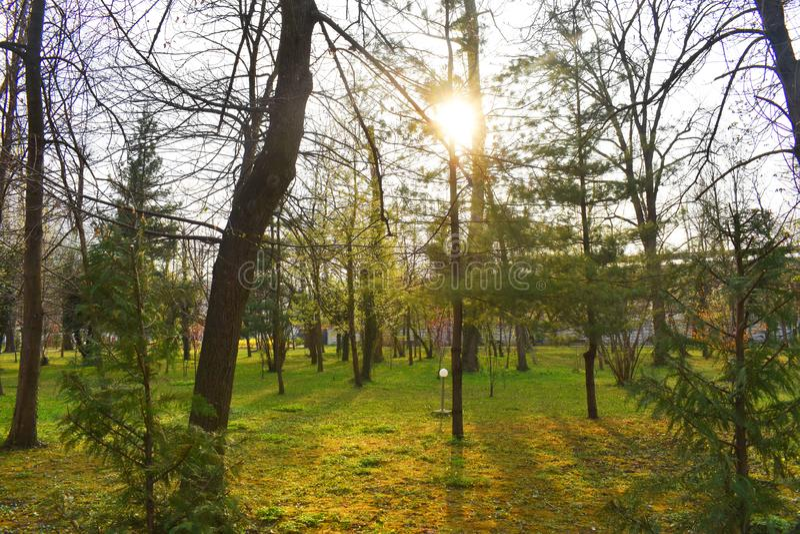 Ramnicu Valcea, Ρουμανία 02 04 2019 - Το όμορφο πάρκο Zavoi σε ηλιόλουστο ημερησίως άνοιξη στοκ εικόνα με δικαίωμα ελεύθερης χρήσης