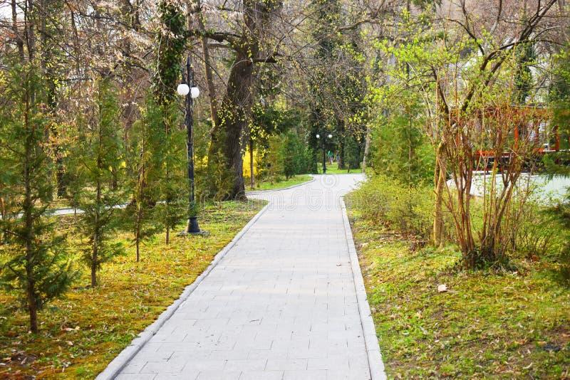 Ramnicu Valcea, Roemeni? 02 04 2019 - Het mooie Zavoi-Park in een de lente zonnige dag stock afbeelding