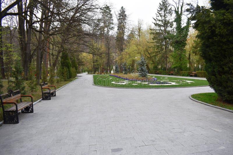 Ramnicu Valcea, Rumunia 02 04 2019 - Pi?kny Zavoi park w wiosna s?onecznym dniu obraz royalty free