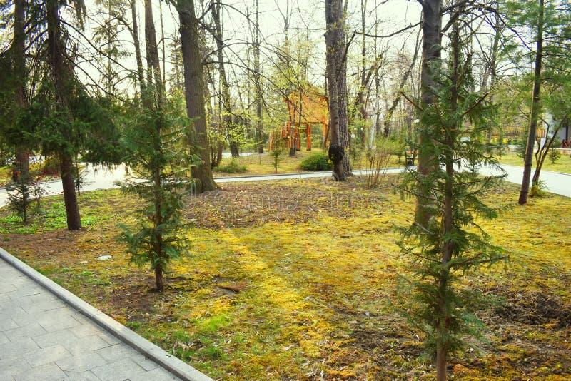 Ramnicu Valcea, Rumunia 02 04 2019 - Pi?kny Zavoi park w wiosna s?onecznym dniu fotografia royalty free