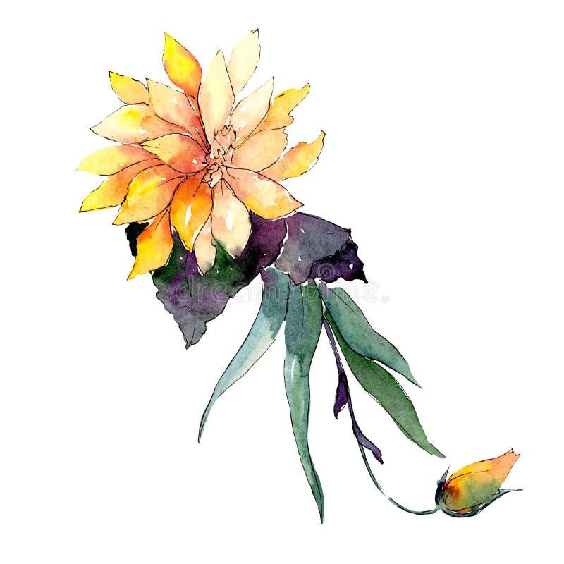Ramo amarillo de la flor con las hojas verdes Elemento aislado del ejemplo del ramo Sistema del ejemplo del fondo de la acuarela stock de ilustración