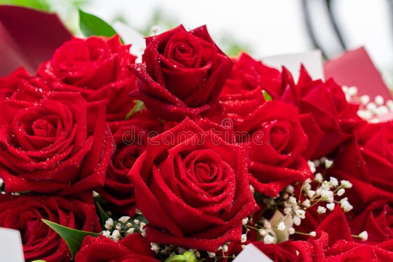 Ramo ascendente cercano de rosas rojas fotos de archivo