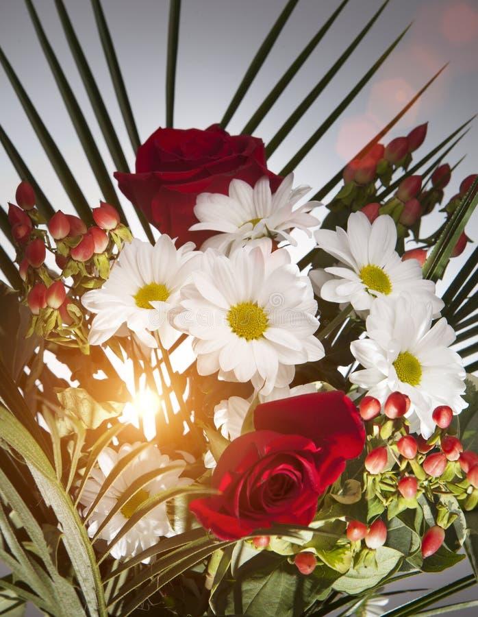 Ramo brillante con las manzanillas y las rosas foto de archivo