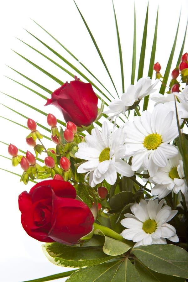 Ramo brillante con las manzanillas y las rosas imagen de archivo libre de regalías