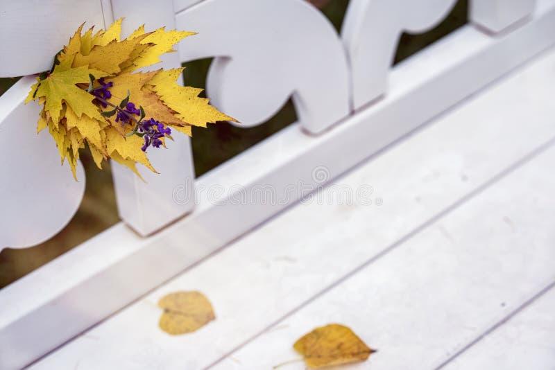 Ramo brillante del otoño de hojas caidas y de primer violeta de la flor en el banco blanco en el parque, día soleado, otoño natur fotografía de archivo libre de regalías