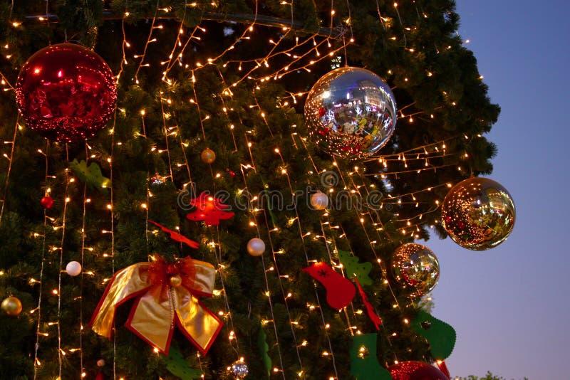 Ramo classico del fondo del nuovo anno accogliente dell'albero di Natale fotografia stock libera da diritti