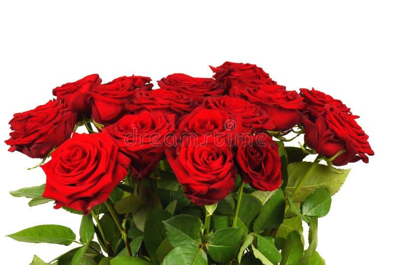 Ramo colorido de la flor de las rosas rojas aisladas imagen de archivo libre de regalías