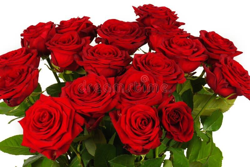 Ramo colorido de la flor de las rosas rojas aisladas en blanco imagen de archivo libre de regalías
