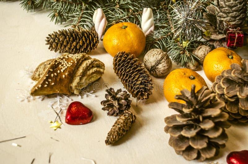 Ramo conífero com os cones diferentes do pinho, tangerinas imagens de stock royalty free