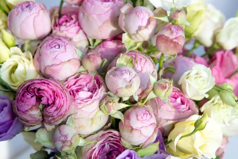 Ramo con el arbusto color de rosa, rosa, blanco, colores en colores pastel de la lila imagen de archivo libre de regalías