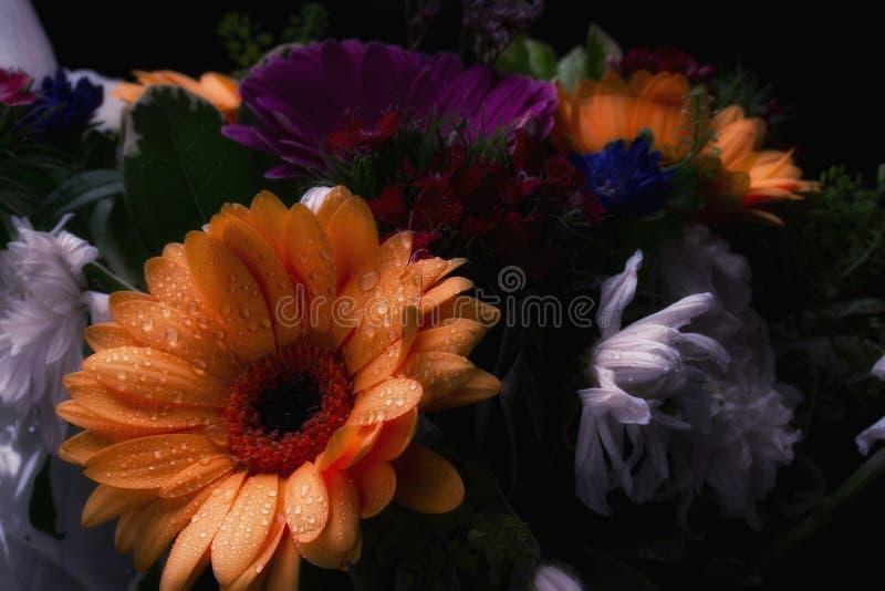 Ramo con la flor anaranjada fotos de archivo libres de regalías