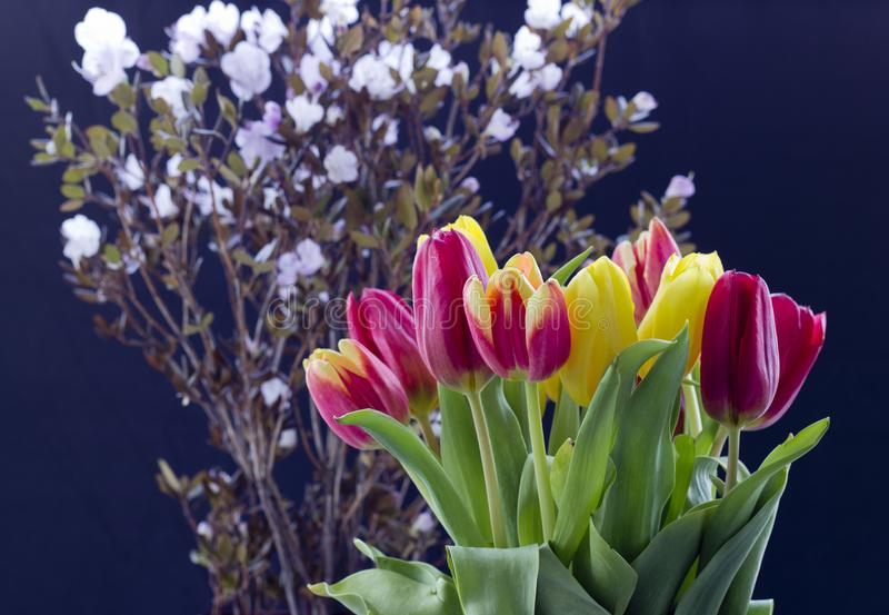 Ramo con los tulipanes imagen de archivo