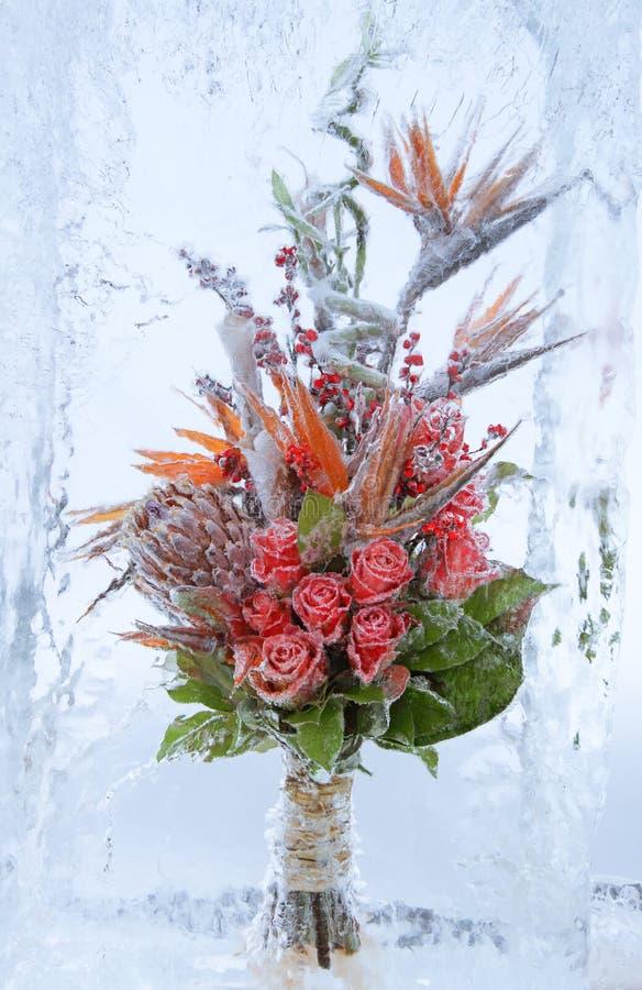 Ramo congelado de flores foto de archivo