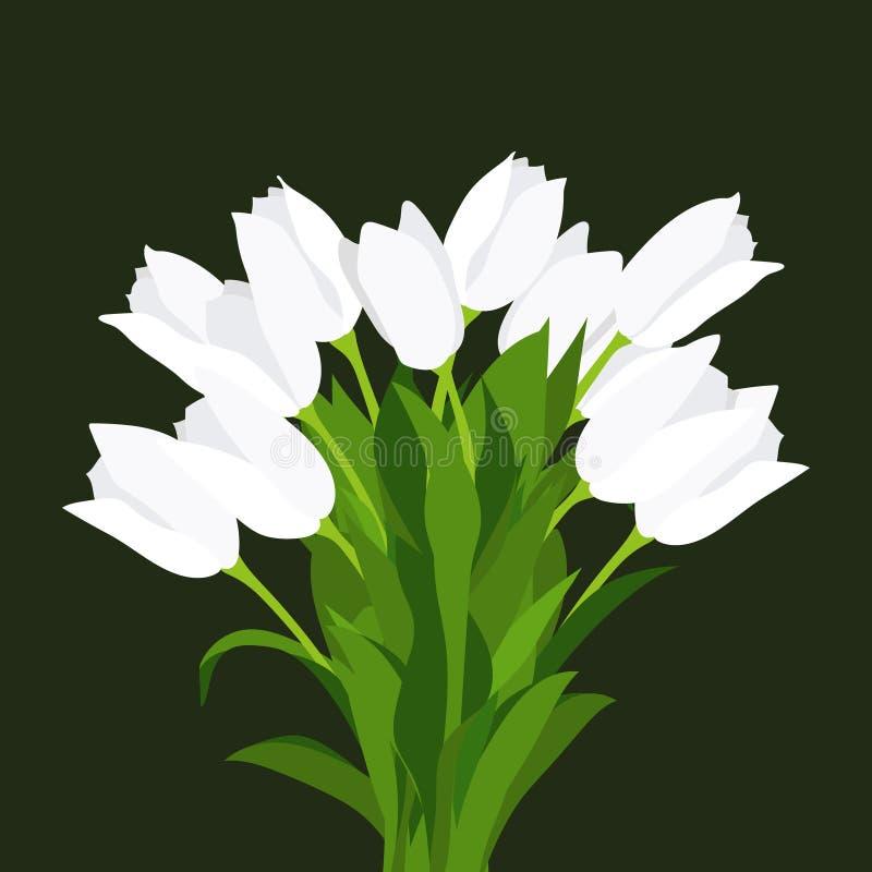 Ramo congratulatorio de tulipanes blancos, pintado a mano, en un fondo negro stock de ilustración