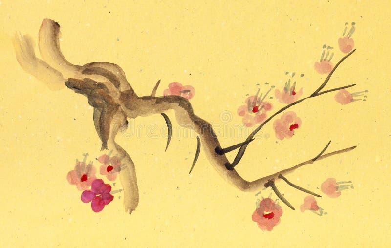 Ramo da árvore de ameixa de florescência ilustração stock
