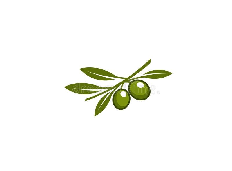 Ramo da azeitona com as folhas verde-oliva e verdes para o logotipo ilustração stock
