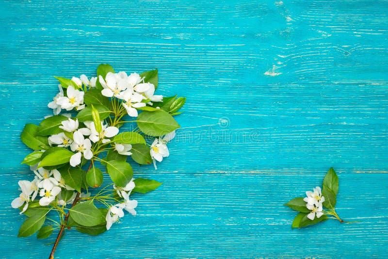 Ramo da flor no fundo de turquesa imagens de stock